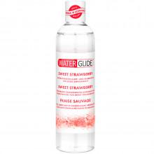 Waterglide Lubrifiant Aromatisé 300 ml  1